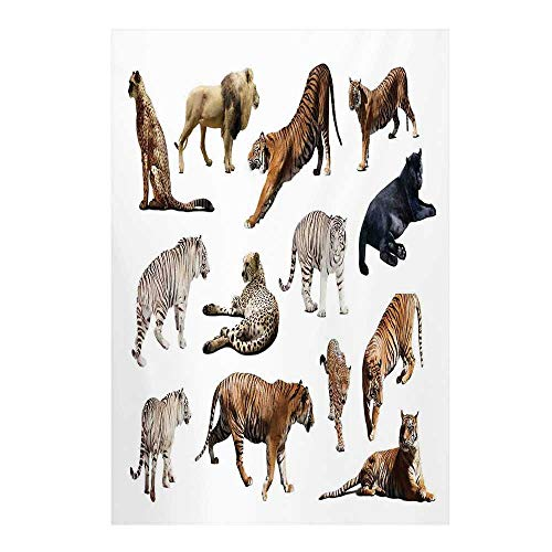 Safari Decor Stylish Backdrop,Collection of Tigersand Other Big Wild Cats Predatory Feline Zoo Lying Standing Background for Photography,59