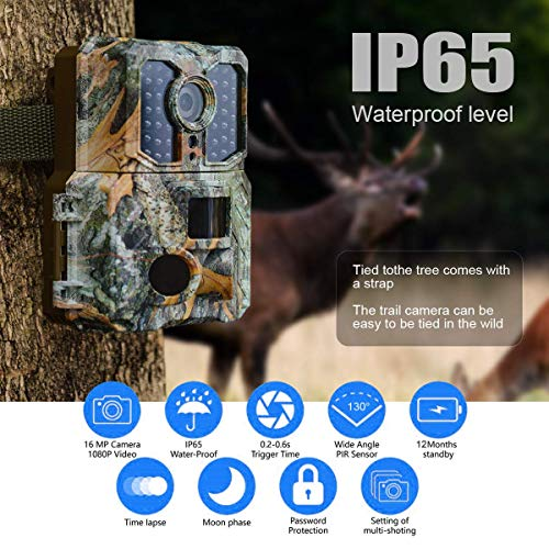 Buy the best trail camera