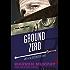 Ground Zero (The Destroyer Book 84)