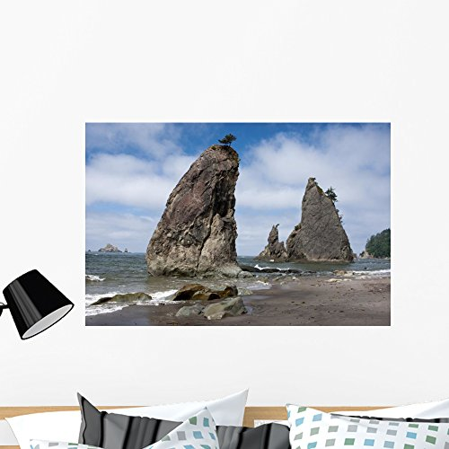 Wallmonkeys Rialto Beach Olympic National Wall Mural Peel and Stick Graphic (36 in W x 24 in H) WM361013 (Earrings Pacific Sea)