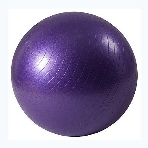 Ballon de gymnastique Anti-éclatement Ballon d'exercice 55cm Diamètre avec Pompe pour Yoga, Pilates Violet ISE SY2003PP65