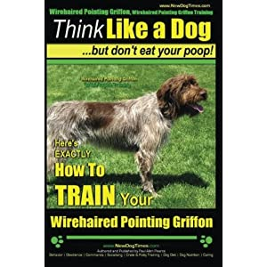 Wirehaired Pointing Griffon, Wirehaired Pointing Griffon Training | Think Like a Dog But Don't Eat Your Poop! | Wirehaired Pointing Griffon Breed ... How to TRAIN Your Wirehaired Pointing Griffon 6