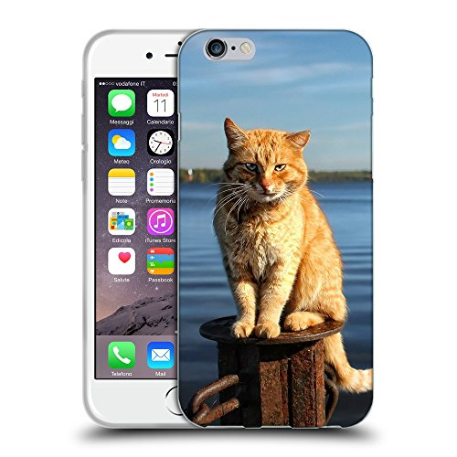 Just Phone Cases Coque de Protection TPU Silicone Case pour // V00004285 Balte-faced chat rouge sur la jetée // Apple iPhone 6 4.7""