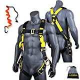 KwikSafety (Charlotte, NC) Supercell Safety Harness   ANSI OSHA Full Body Personal Fall Protection  1 Dorsal Ring 2 Side D-Rings Grommet Tongue Buckle Straps Tool Lanyard Construction Tower Roofing