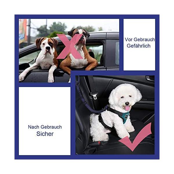 51jidaib kL SlowTon Hundesitzgurt, 2 Packungen Haustier Hund Katze Auto Sicherheitsgurt für alle alltäglichen und sportlichen…