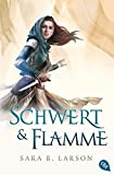 Schwert & Flamme (Die Schwertkämpfer-Reihe, Band 3)