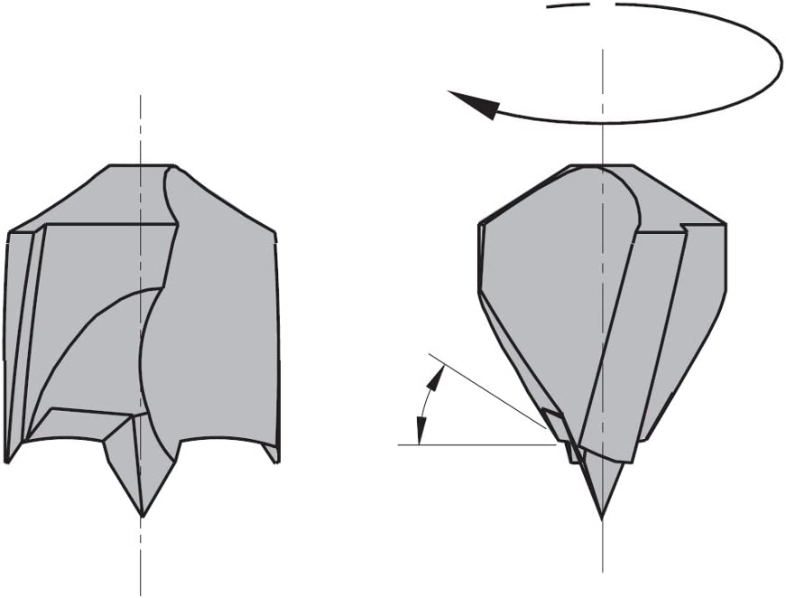 15mm Diameter 10x20mm Shank 19//32-Inch Left-Hand Rotation CMT 309.150.12 Dowel Drill