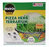 Miracle Gro Kids Pizza Herb Terrarium Kit