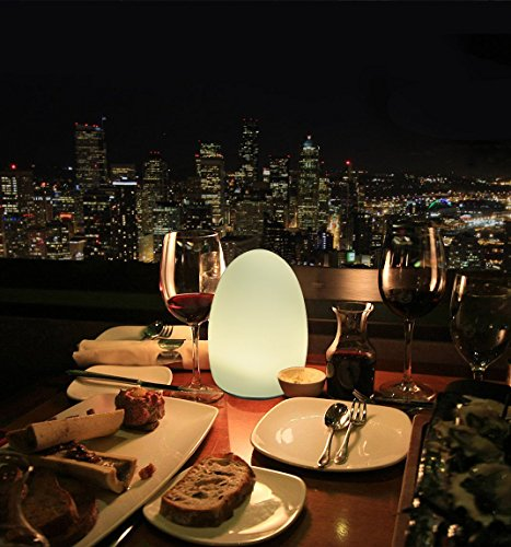 HERO-LED TB-EG-01 Restaurant Table Lighting, Wireless Induction Rechargeable LED Cordless Table Lamps with Remote Timer Controller, Set of 2, Egg 01 by HERO-LED (Image #4)'