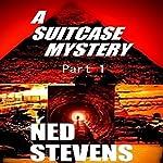 A Suitcase Mystery | Ned Stevens
