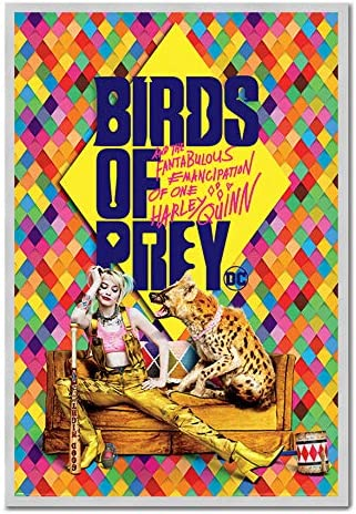 Amazon Com Birds Of Prey Harley S Hyena Poster Silver Framed 96 5 X 66 Cms Approx 38 X 26 Inches Kitchen Dining