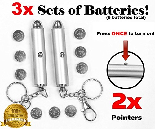 Animmo 2X Cat Light Pointers Batteries Included For Both Plus Individually Tested For Proper Function  Stays On  With One Click   Interactive Bright Exercise Training Tool Fun Cat Dog Chaser Toy