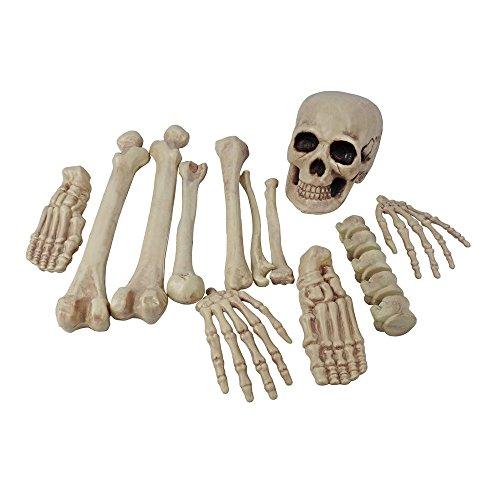 Totally Ghoul Bag Of Bones Realistic Skeleton Halloween Prop - 12 pieces (Skull Head -