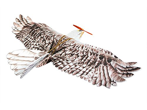 RC Airplane EPP Plane Model Mini Eagle Wingspan 1200mm Slow Flyer Biomimetic Aircraft Kit With (Mini Power Wing)