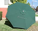 """BELLRINO DECOR Replacement HUNTER GREEN """" STRONG & THICK """" Umbrella Canopy for 10ft 8 Ribs (Canopy Only) Review"""