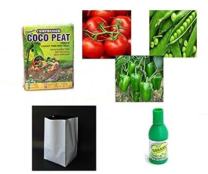 Buy Home Garden Store Garden Starter Basic Kit - Coco Peat