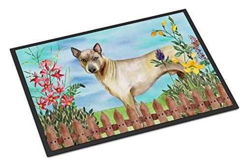 Caroline's Treasures Thai Ridgeback Spring Doormat, 18'' x 27'', Multicolor by Caroline's Treasures