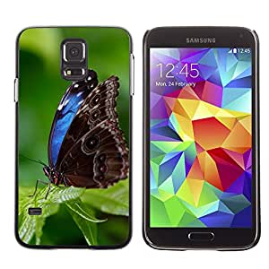 hello-mobile Etui Housse Coque de Protection Cover Rigide pour // M00135901 Animal azul Hermosa Morpho // Samsung Galaxy S5 S V SV i9600 (Not Fits S5 ACTIVE)