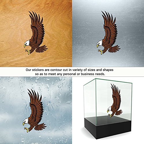 Hobby Vinyl Decal Eagle hobby decor Animals Feeding south of (11 X 6,01 Inches) Fully Waterproof Printed vinyl sticker