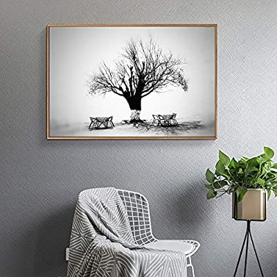 Black And White Tree - Floating Framed Canvas Print