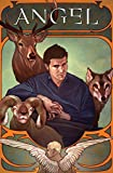 img - for Angel Volume 3: The Wolf, The Ram, and The Heart HC (Angel (Numbered Hardcover)) book / textbook / text book