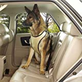 Guardian Gear Ride Right Comfort Car Harness for Pets, Large, Khaki, My Pet Supplies