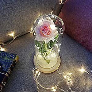 raillery Beauty and The Beast Rose Kit-Romantic Immortal Glass Flowers Micro Landscape Rose Simulation Glass Shade LED-Great for Valentine's Day Mother's Day Anniversary Wedding 9