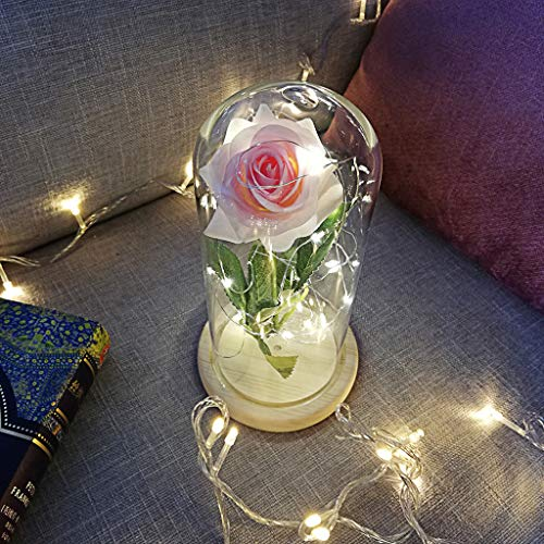 raillery Beauty and The Beast Rose Kit-Romantic Immortal Flower Micro Landscape Rose Simulation Glass Shade LED-Great for Valentine