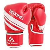 Boxing Gloves Review and Comparison