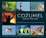 Cozumel Above The Sea