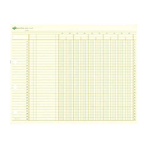 National Brand Columnar Sheets, 10 Columns, Green Paper, 9.25 x 11.875 Inches, 100 Sheets (18410)