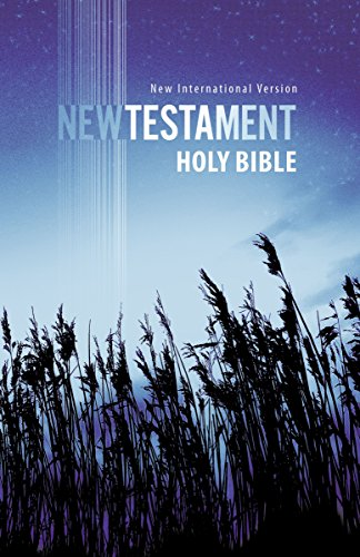 NIV, Outreach New Testament, Paperback, Blue