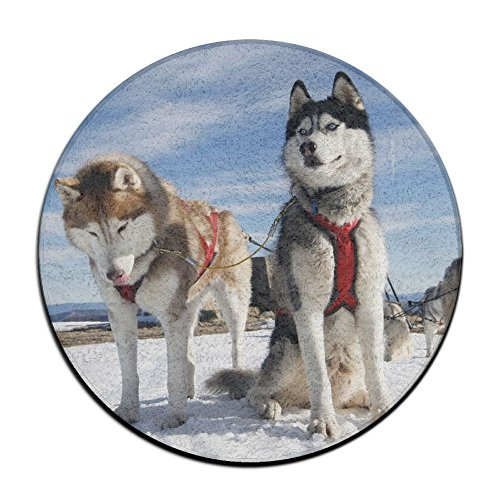 Non-Slip Round Bathroom Mats,60cm, Entry Way Shoes Scraper Patio Rug Dirt Debris Mud Trapper -dogs Snow for $<!--$5.99-->
