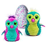 Hatchimals 6034333 Hatchimals Teal Egg