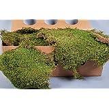 Plaques de mousse décorative, vert naturel, 2kg - tapis décoratif / mousse naturelle - artplants