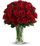 Chicago Flower Co. - Love and Devotion - 2dz Long Stemmed Red Roses - Fresh and Hand Delivered