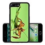 Liili Premium Apple iPhone 7 Plus Aluminum Backplate Bumper Snap Case iPhone7 Plus IMAGE ID: 17596579 Extatosoma tiaratum Unusual insect