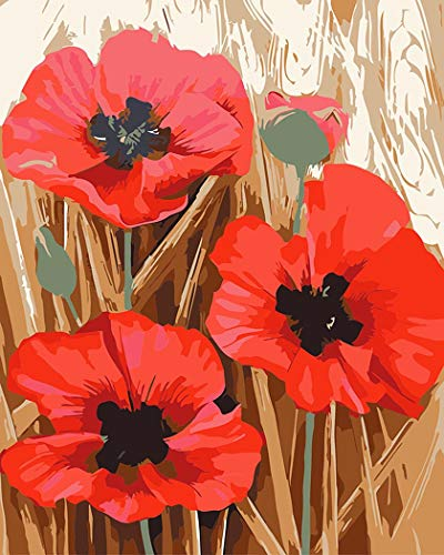Paint by Number Kits DIY Oil Painting by Arts Language - Red Poppies - Painting by Numbers on Canvas for Adults Kids Beginner(16x20 inch, with Wood Frames Installed by Yourself)