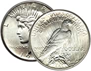 1 - Peace Silver Dollar Mid-1920's Dated Dollar Extra Fine or Better Dollar XF or Be