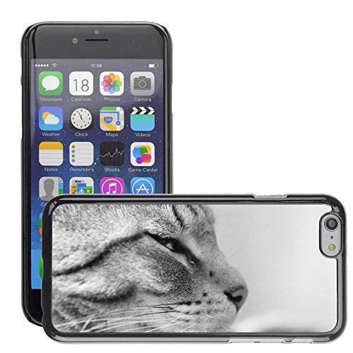 "Bild Hart Handy Schwarz Schutz Case Cover Schale Etui // M00135516 Cat Black White Tier // Apple iPhone 6 PLUS 5.5"""