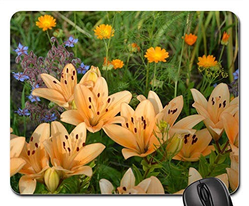 (Mouse Pad - Lily Flowers Garden Dacha Salmon Lilies)