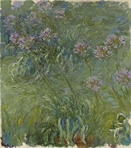 'Agapanthus,1914-17 By Claude Monet' oil painting, 18x20 inch / 46x51 cm ,printed on Linen Canvas ,this Beautiful Art Decorative Canvas Prints is perfectly suitalbe for Gym decoration and Home decor and Gifts