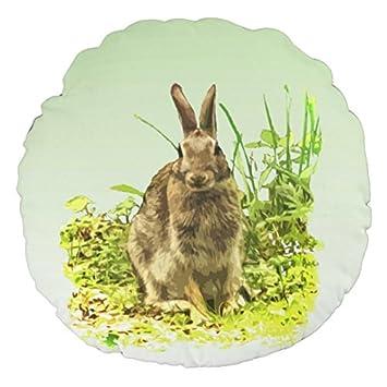 Amazon.com: Conejo en zacate, para el hogar o la oficina, en ...
