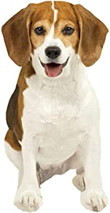 "Paper House Productions 3.5"" x 1.75"" Die-Cut Beagle Dog Shaped Magnet for Refrigerators and Lockers"