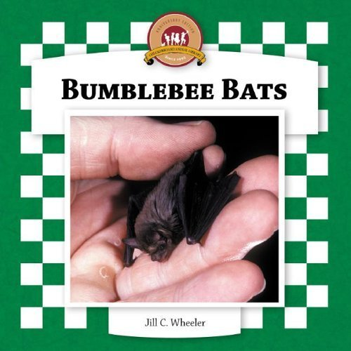 Bumblebee Bats (Checkerboard Animal Library) by Jill C Wheeler (2006-01-01)