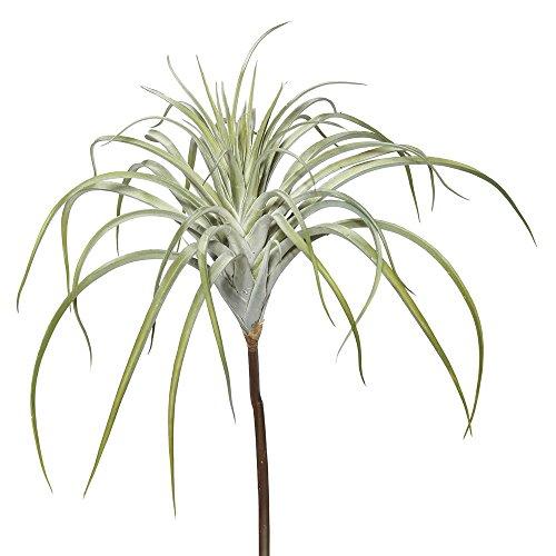 Vickerman FE172101 Succulent Tillandsia Pick