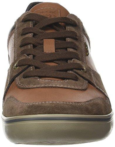 Geox Mens Box 27 Fashion Sneaker Ebano / Marrone