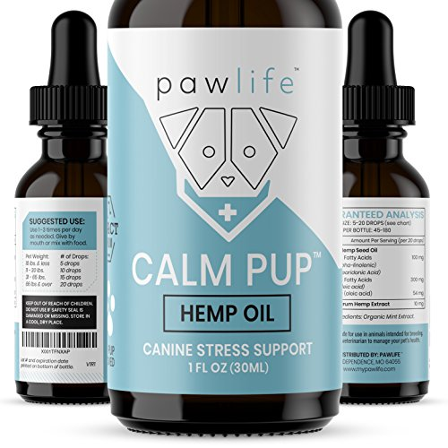 Top 10 Dog Supplements For Anxiety Of 2019 No Place