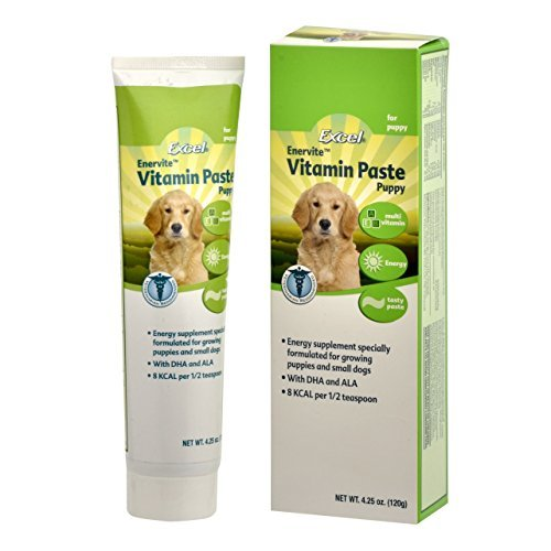 Excel Enervite Daily Supplement Vitamin Paste for Puppies, 4.25-Ounce by Excel (Vitamin Enervite)