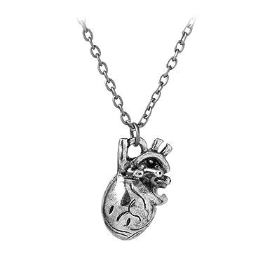 Amazon Sl Beloved My Organ Heart Anatomy Necklace Pendant For